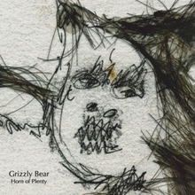 Grizzlyhorn