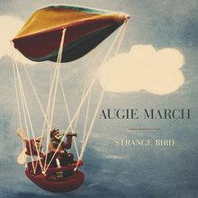 Augie March - Strange Bird